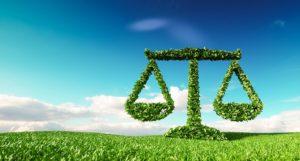 immobilier et loi climat